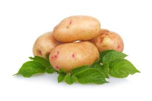 Kartoffelwicksel