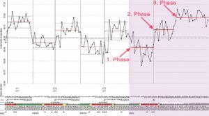 Stampe-Gravidanza_3 phase